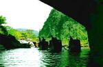 Vườn quốc gia Phong Nha - Kẻ Bàng hướng tới việc UNESCO công nhận lần thứ 2 theo tiêu chí đa dạng sinh học