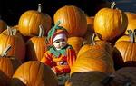 Không khí Halloween bốn phương