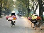 Italia xuất bản sách giới thiệu về Việt Nam