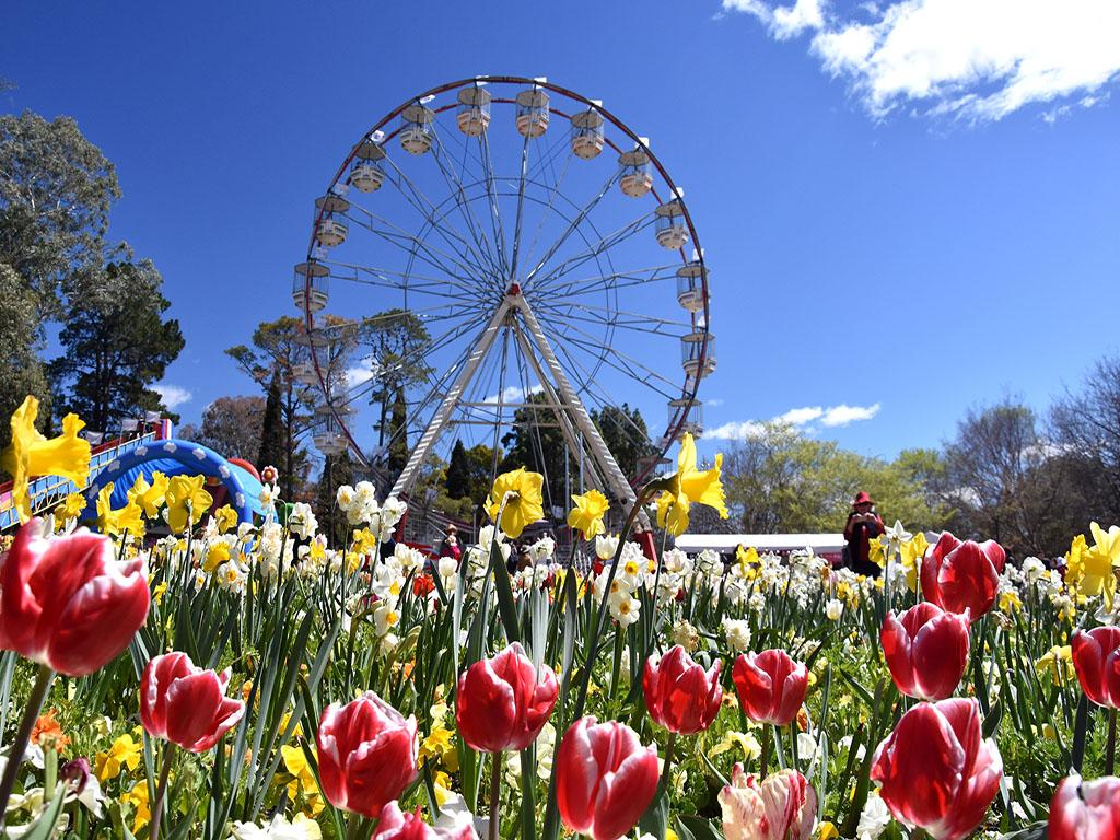 Có gì ở lễ hội hoa Floriade lớn nhất Nam bán cầu?
