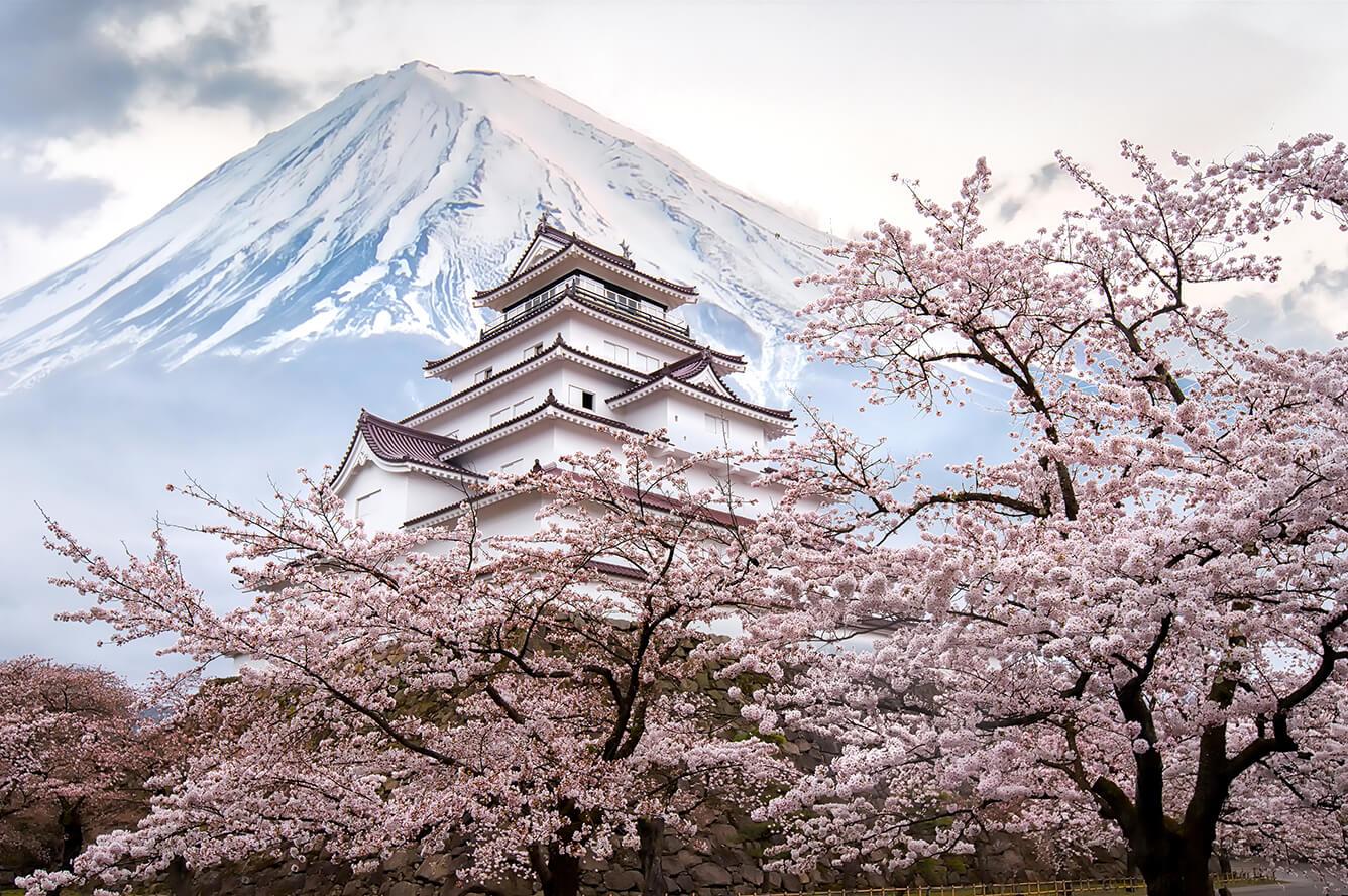 Fukushima, lời ước hẹn trở về…