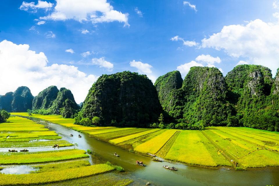 Ngắm trọn mùa vàng Tam Cốc