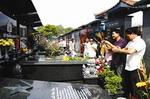 Tục tảo mộ trong tâm thức người Việt