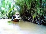 Thới Sơn- viên ngọc quý hạ lưu sông Tiền