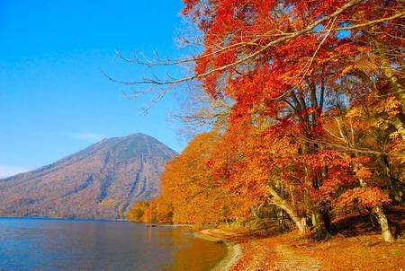 Hành trình khám phá mùa thu Nhật Bản