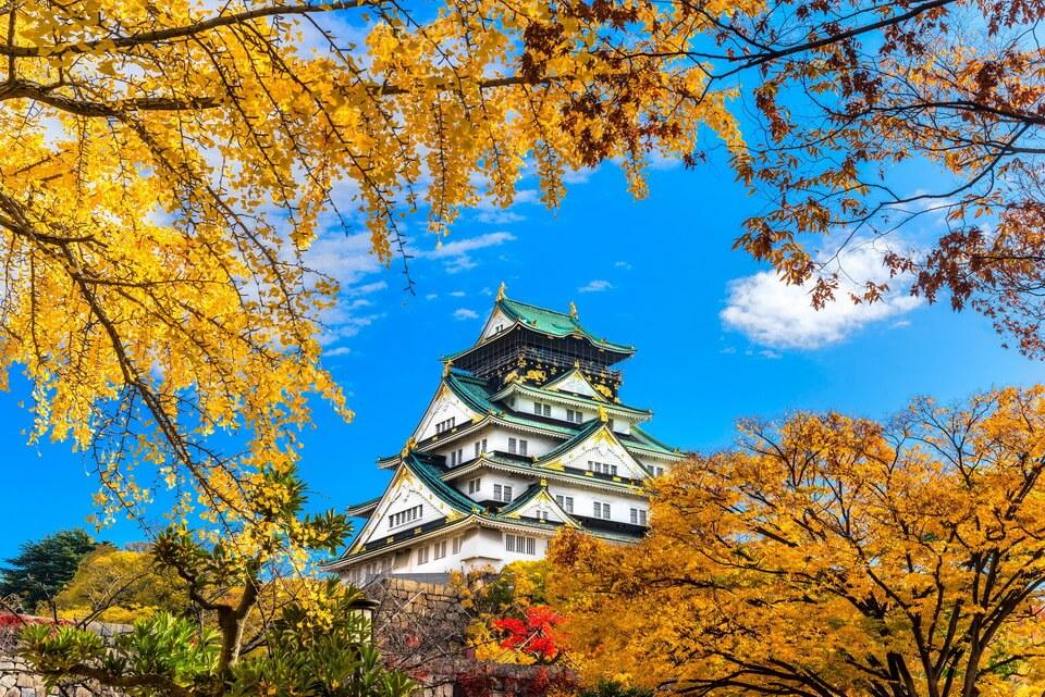 """""""Mùa nhớ"""" ở Osaka, tại sao không?"""