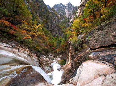 Lãng mạn mùa thu xứ Hàn