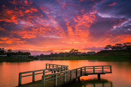Đà Lạt: Thiên đường mùa hạ