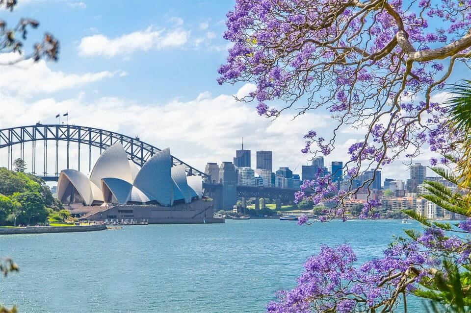 Vi vu Châu Úc chỉ từ 29,99 triệu